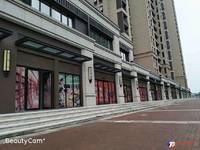 出售中南君悦府60.14平米136万商铺