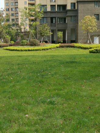 太仓市区 雨润华府 五洋广旁 绿化高 品质小区 配套成熟 实验中学 朱莉小学