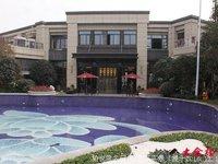 出售:碧桂园119平 3房2厅2卫 精装 好楼层 250万可商
