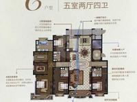 上海公馆 275平 四房四卫大平 纯毛坯 俯瞰天境湖 带车位 有钥匙