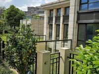 南洋壹号公馆 独栋别墅 560平前后大院子 占地面积1亩,好位置6 3 4,