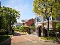 东海高尔夫独栋别墅420平 前后大院子 环境优雅 鸟语花香1470万满二年税