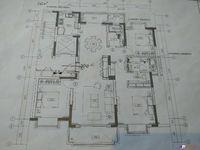 积水二期 新房源 保证真实有效 142平 好楼层 想买直接电话