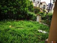 东景瑞 一期下叠加 远离高速 位置好 绿化非常好 双开间朝南 稀缺房源 看房方便