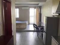 出租通达财富广场1室1厅1卫37平米1500元/月住宅