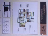 丽景嘉园 142平米 单价14500 保证有房子 懂的客户直接来电话