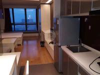 低价出售;莱茵城市广场公寓49平 未出租很新 35万 ..
