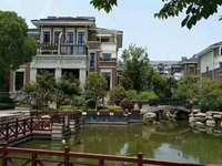 奥森尚东 双拼别墅 302平 米带大院子带 大泳池 仅售590万
