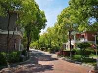 出售 御园山庄独栋别墅456平 前后大院子 好位置 环境优雅 随时看房诚心出