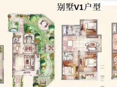 太仓向东岛独栋别墅前后大院长466平毛坯720万占地一亩,本公司专做高端别墅小区