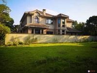 向东岛独栋产证620平带大院子满2年抛售,房型方正、位置好,多套有钥匙 看方便