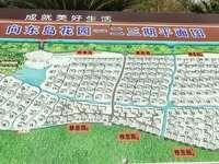 向东岛雅韵占地1.2亩,1150万毛坯满2年院子比较大,雅韵多套在卖