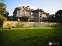 向东岛 雅思大独栋 目前最划算一套独栋 占地大 院子大 满两年税少 有多套独栋